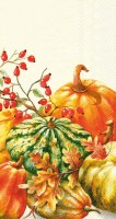 "9"" x 5"" Cream Calabaza Guest Towels"