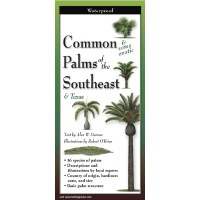 "9"" Common Palms of the South East and Texas Folding Laminated Guide"