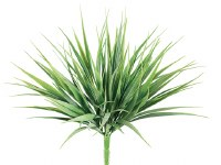 """12""""GRN/FS VANILLA GRASS"""