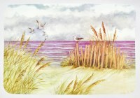 """12"""" x 18"""" Vinyl By the Sea Placemat"""