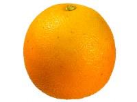 """3"""" Orange Artificial Tangerine"""