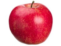 "3"" Red Artificial Apple"