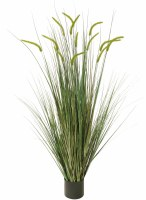 """60"""" Potted Two Tone Green Artificial Foxtail Grass"""