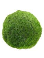 """4"""" Green Moss Orb"""