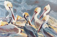 "30"" x 40"" 7 Pelicans Canvas"