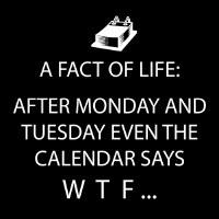 "5"" Square Black and White Calendar Says WTF Beverage Napkins"