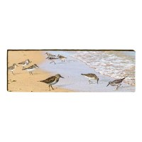 """10"""" x 30"""" Sandpipers in Surf Plaque"""