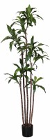 """84"""" Potted Green Artificial Fragrans Dracaena"""