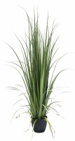 """84"""" Artificial Gladiolus Grass Potted"""