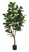 """72"""" Artificial Fiddle Leaf Multi-Trunk Tree"""