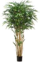 "84"" Green Artificial Tropical Bamboo Tree in Pot"