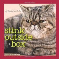 Stink Outside The Box Book