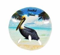 "3"" Sanibel Island Pelican Sand Dollar Resin Magnet"