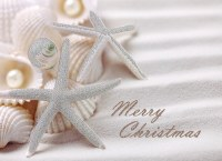 """6"""" x 8"""" Box of 14 White Glitter Shells Merry Christmas Greeting Cards"""