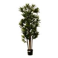 "60"" Green Artificial Dracaena Reflexa Tree in Black Pot"