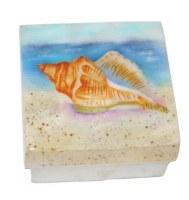 """3"""" Square Muticolor Conch Shell on Beach Capiz Shell Box"""