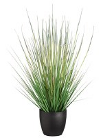 "34"" Green Artificial Horsetail Grass in Black Pot"