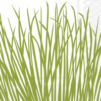 "7"" Square Green Seagrass on White Luncheon Napkins"