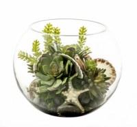 "10"" Faux Succulent with Shells in Glass Terrarium"