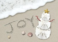"""6"""" x 8"""" Box of 18 Joy in the Sand Holiday Greeting Cards"""