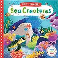 Sea Creatures Book