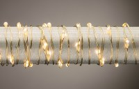 "60"" Battery Operated Warm 30 LED Gold Wire Light String"