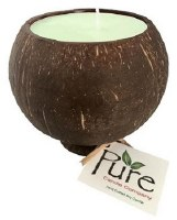 "4.25"" Key Lime Scented Pure Coconut Candle"