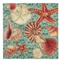 "7"" Square Turquoise Shell Toss Paper Luncheon Napkins"