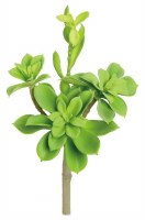 """10"""" Faux Green Sprouting Echeveria"""