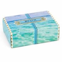 4.5 oz. Small Beach Box Soap Bar