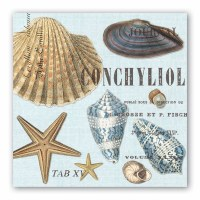 "7"" Square Seashells Luncheon Napkins"