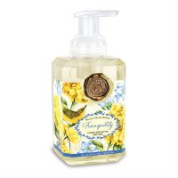 18 fl. oz. Tranquility Foaming Hand Soap