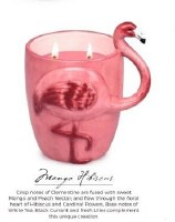15 oz. Pink Flamingo Mango Hibiscus Scented Candle with Two Wicks