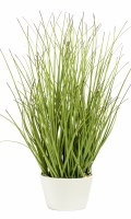 "12"" Faux Green Grass with Dark Tips in White Pot"