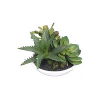 """4"""" Green Faux Aloe and Succulents in Low White Pot"""