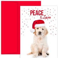 """8"""" x 6"""" Box of 18 Puppy Peace Christmas Greeting Cards"""