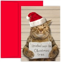 """8"""" x 6"""" Box of 18 Bad Cat Christmas Greeting Cards"""