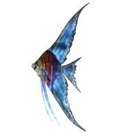 """41"""" Left Facing Angelfish Metal Plaque MM178L"""