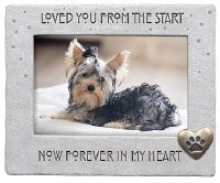 """4"""" x 6"""" Loved From the Start Frame"""