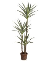 "59"" Faux Green Yucca Tree in a Plastic Pot"