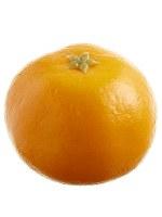 """2"""" Faux Tangerine"""