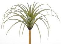 "10"" Faux Green Spider Bromeliad"