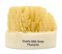 Plumaria Soap With a Sponge