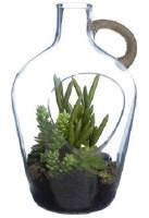 "12"" Faux Succulents in Glass Jug"