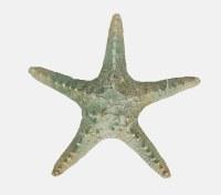"8"" Aqua and Distressed White Finish Starfish"