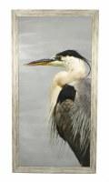 "50.5"" x 26.5"" Photo Black Beak Heron"