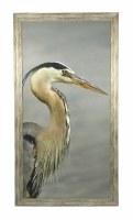 """50.5"""" x 26.5"""" Photo Gray Beak Heron"""