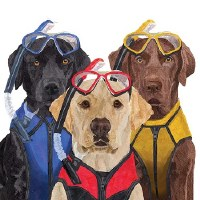 "5"" Square Scuba Dogs Paper Beverage Napkins"