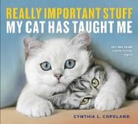 Stuff My Cat Has Taught Me