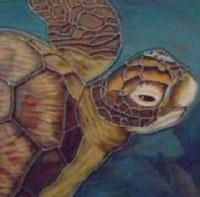 "8"" Square Turtle Tile"